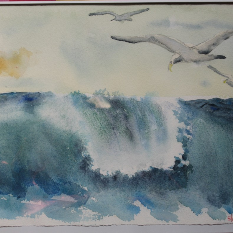 Gulls Over Waves