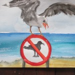 WHAT! No Gulls Allowed
